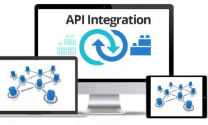What is API and Importance of API Integration