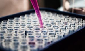 why should we use HPLC testing
