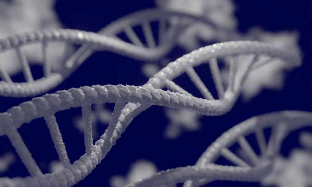 Genetic Engineering Book Plot Ideas